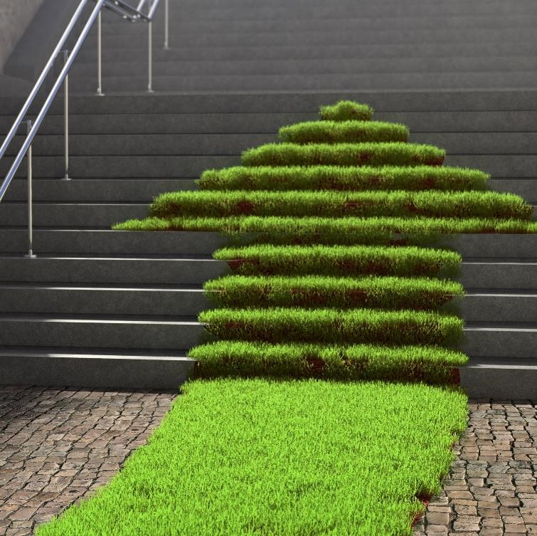 Arrow growing upwards represents growth in sustainable cleaning solutions